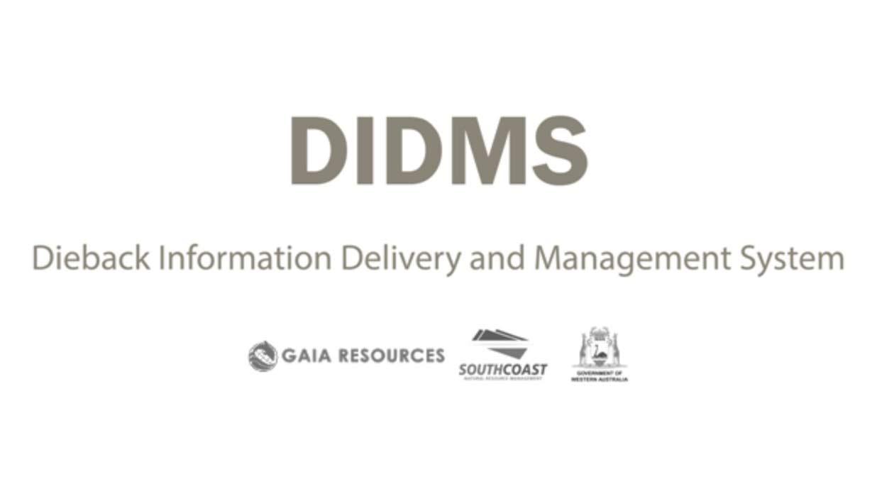 DIDMS logo